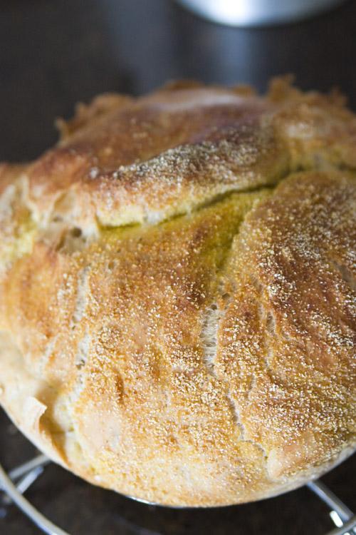 No Knead Bread - Done!